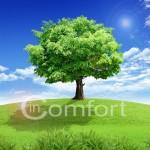 Жизнь в комфорте. Как создать долгосрочные изменения